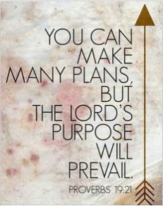 Many Plans